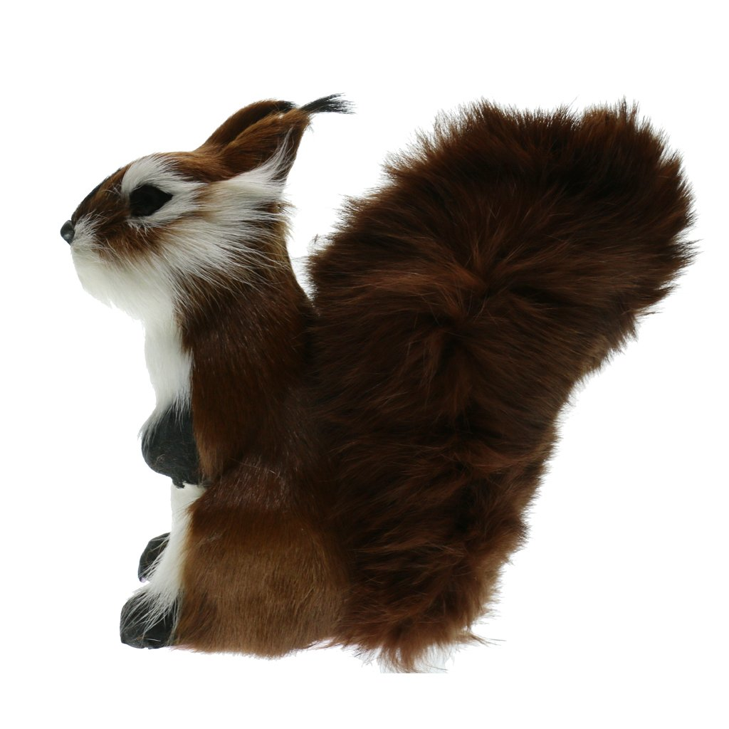 Flameer Realistic Artificial Squirrel Animals Decoration Ornaments Toys Gift Taxidermy - B