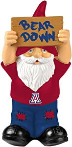 Elite Fan Shop NCAA Small Garden Gnomes
