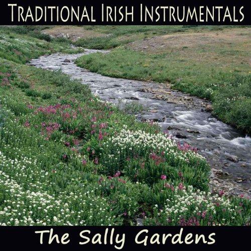 Traditional Irish Instrumentals: The Sally Gardens (Irish Gardens Sally)