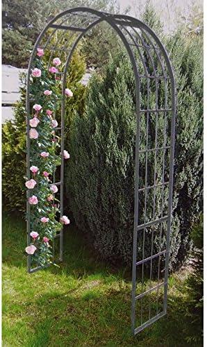 FloraBis Garten-Rosenbogen 220x120x40cm Ayuda Posicionamiento Reja de Planta Trepadora Arco de Puerta Pérgola Spalier: Amazon.es: Jardín