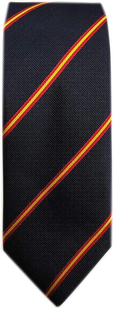 DHISPANIA Corbata Azul Marino con Bandera de España y Pañuelo a juego: Amazon.es: Ropa y accesorios