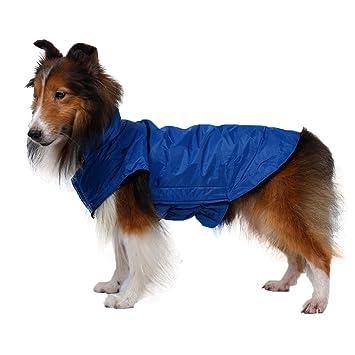 AIYUE® Ropa Mascotas Invierno Otoño Chaleco Perro Impermeable Abrigo Chaqueta Capa Caliente Cachorro Perrito Grande Mediano Pequeño: Amazon.es: Deportes y ...
