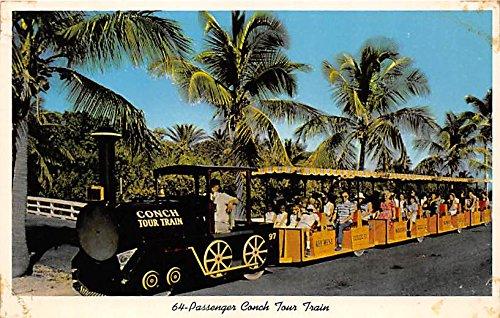 64 Passenger Conch Tour Train Key West, Florida, FL, USA Postcard Post Card Usa Passenger Trains
