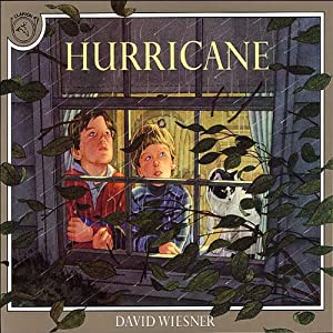 Hurricane Audiobook