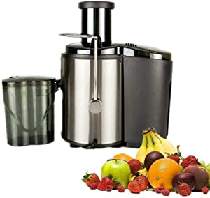 Electric Juicer 800W Power, Easy Clean Extractor Press Centrifugal Juicing Machine, Feed Chute for Whole Fruit Vegetable, Black Silver