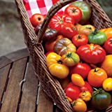 Green's Gardens Rare Heirloom 200 Mix Tomato Seeds Edible Landscaping: Eat Your Beautiful Yard Great Addition to Your Garden