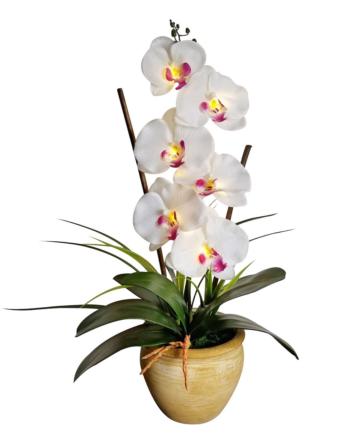 Homeseasons LED Pre Lit Lighted Single Stem Phalaenopsis Silk Orchid Arrangement-Battery Operated Lighted Artificial Orchid Plant(White) by Homeseasons