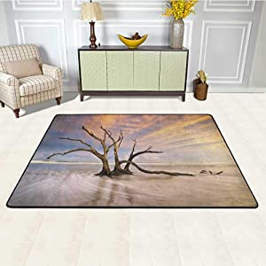 Driftwood Office Chair Mat for Carpet 5' x 8', Seascape Theme Dead Tree Driftwood in The Ocean at Sunset Landscape Print Easy Clean Stain Fade Resistant Rug, Beige and Orange