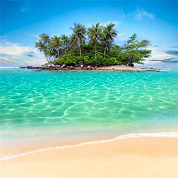 AOFOTO 10x10ft Seaside Beach Island Background for Photography Blue Swimming Sea Water Summer Party Decoration Vacation Holiday Backdrop Banner Kids Adults Portrait Photo Studio Props Vinyl Wallpaper