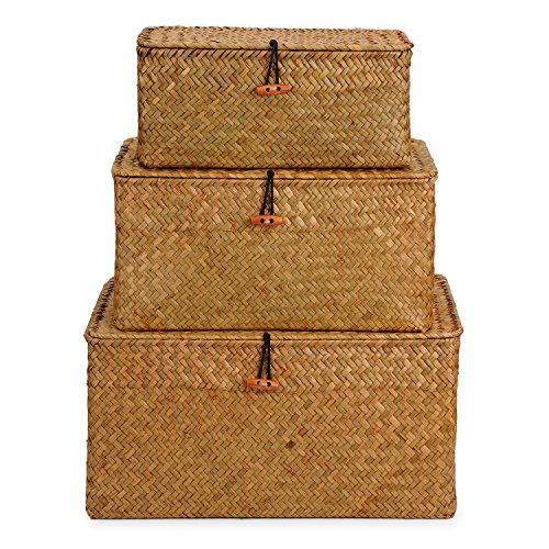 DOKOT Rectangular Handwoven Seagrass Storage Basket with Lid and Home Organizer Bins, Set of 3 (Set of 3 (S+M+L)(Super Large), Yellow) by DOKOT
