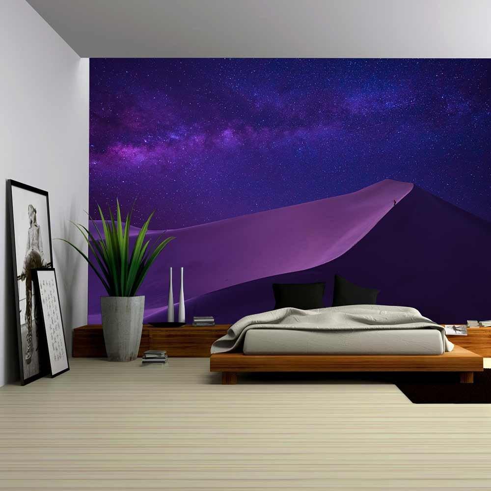 Man Looking Milky Way in Desert Wall Murals Wall26