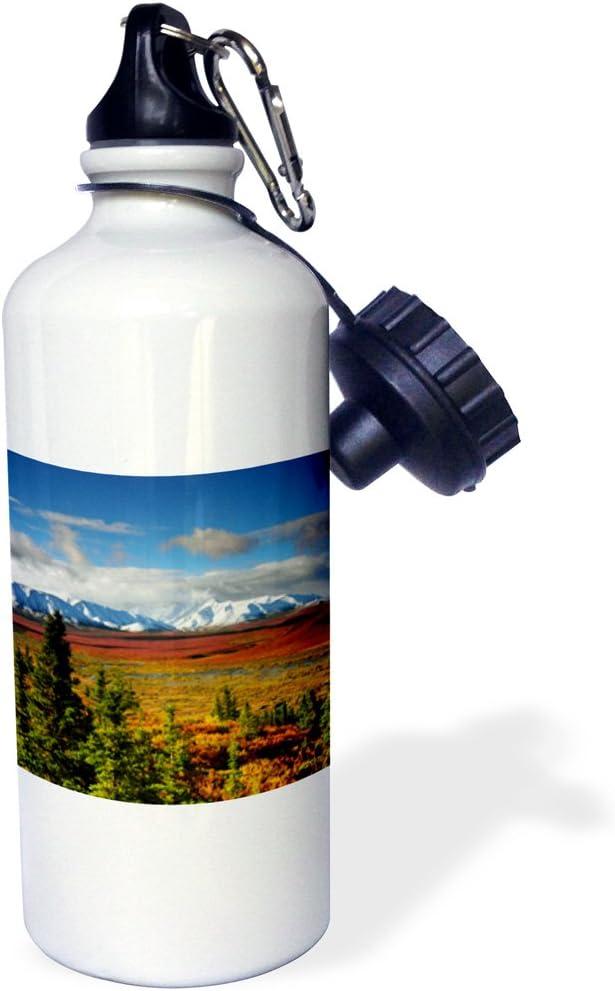 USA US02 MHE0038 Michel Hersen Sports Water Bottle White 21 oz Denali National Park Taiga Alaska 3dRose wb/_142071/_1Autumn