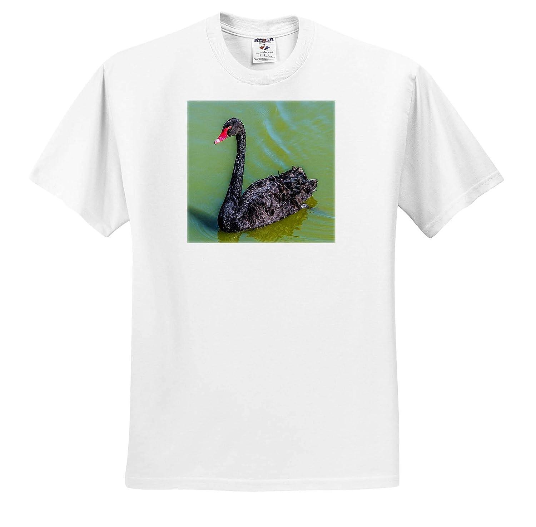 ts/_318951 Beautiful Birds 3dRose Lens Art by Florene Image of A Black Swan on Green Lake Adult T-Shirt XL
