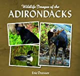 Wildlife Images of the Adirondacks, Eric Dresser, 1595310266