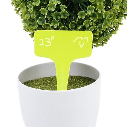 vorcool Plantas carteles 100pcs 10 * 6 cm Amarillo Plástico Planta ...