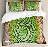 Plant King Size Duvet Cover Set by Ambesonne, National Flower of Lesotho South of Africa Aloe Polyphylla Spinning Spiral Aloe Vera, Decorative 3 Piece Bedding Set with 2 Pillow Shams, Multicolor
