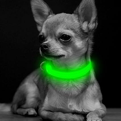 B.Seen BSeen Collar de Perro LED Recargable USB Brillante XS ...