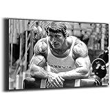Arnold Schwarzenegger poster Schwarzenegger bodybuilder canvas poster applicable gym man room poster (24x36inch,Canvas roll)