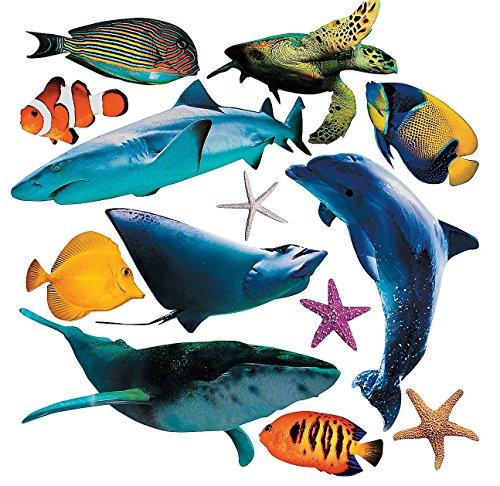 Jumbo Realistic Sea Life Cutouts (13 pcs./unit) 5 1/2
