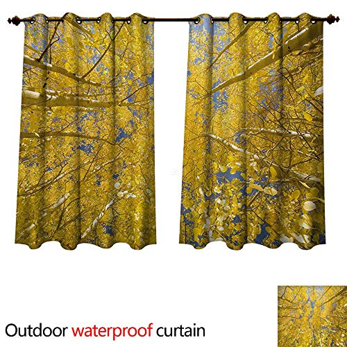 WilliamsDecor Yellow and Blue Home Patio Outdoor Curtain Looking Skyward Amongst The Patch of Sun-lit Aspen Trees in Autumn Life Print W108 x L72(274cm x 183cm)