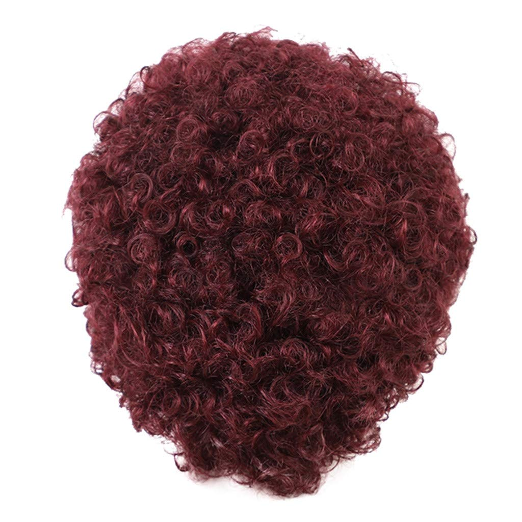 DDLmax Short Wine Red Afro Curly Synthetic Hair Replacement Wigs for Black Women, Loose Curly African American Costume Cosplay Wigs by DDLmax