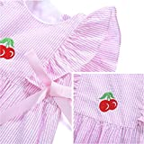 De-Lovely Baby Girl Dress Clothes - Embroidered