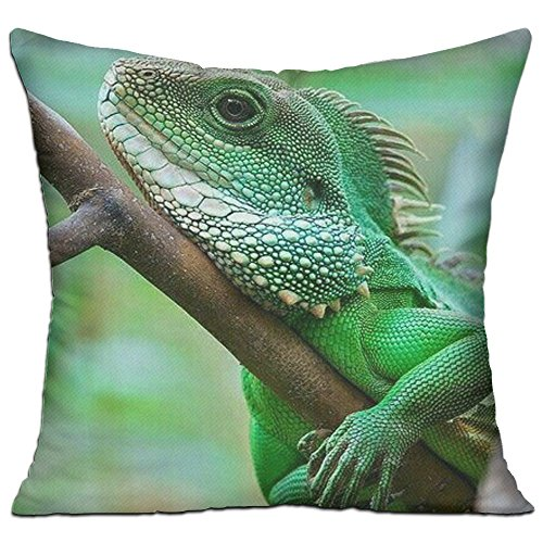 Noi Viviamo Throw Pillow Case Decorative Bearded Dragon Lizards Green Chameleon Pillow Decorative For Sofa, Lap Desk, Home Pillow Cotton Linen Cushion Covers Filled Pillow Form Insert 18 X 18 Inch (Lizard Deck Light)