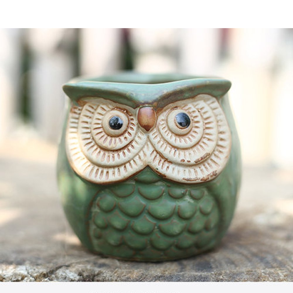 Better-way Owl Pot Ceramic Succulent Plant Container Cactus Planter Orchid Flower pots Indoor Decorative Ceramic Cute Animal Planter Red (Flower Floral Surface, Owl)