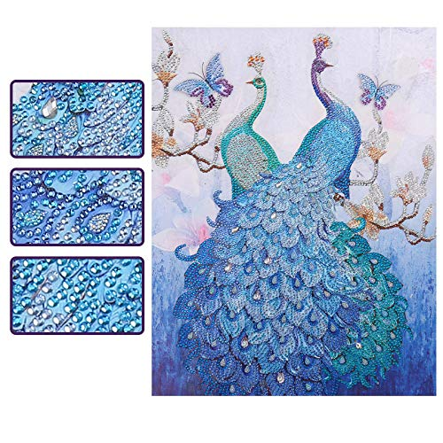 SuperDecor DIY 5D Diamond Painting Kits Special Shaped Rhinestones Blue Peacock Butterfly Pattern Diamond Embroidery Paintings Art by Number Kits for Home Wall Decor 16x20Inch ()