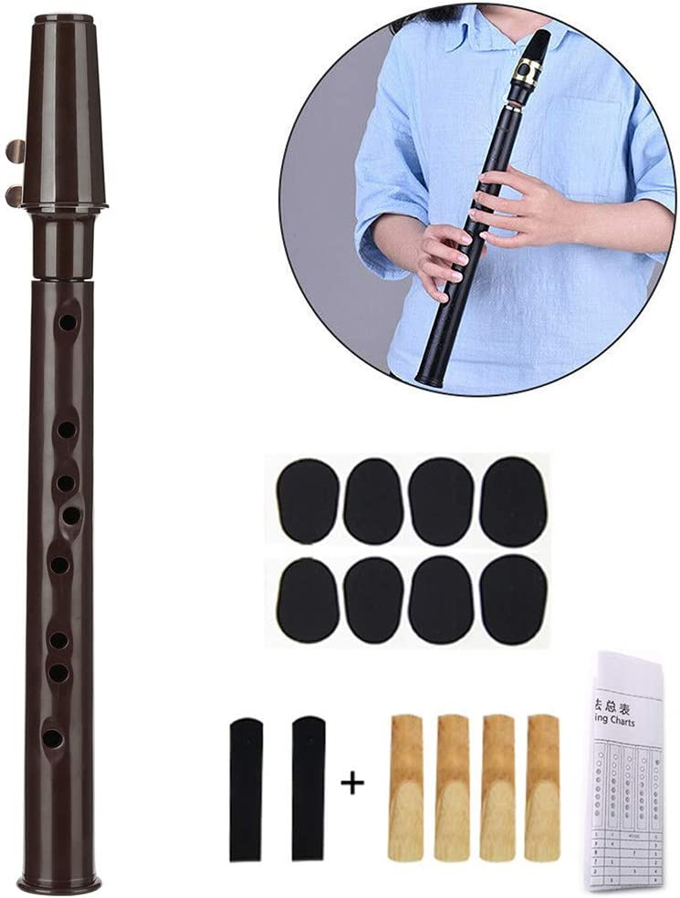 Pocket Saxophone Fingering Charts Mouthpiece Portable Mini Little Sax Saxophone Kit with Carrying Bag Sax Dental Pads Woodwind Instrument Professional Instruments for Amateurs and Professional