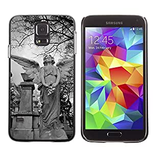 Etui Housse Coque de Protection Cover Rigide pour // M00170856 Cementerio Tumba Arte Esculturas // Samsung Galaxy S5 S V SV i9600 (Not Fits S5 ACTIVE)