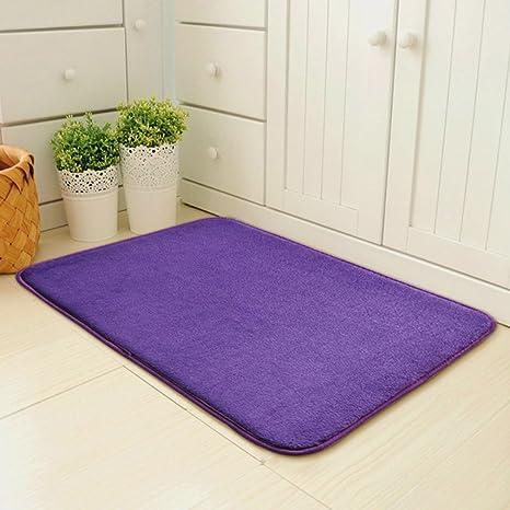 Amazon.com : Doormat for Entrance Door Mat Water Absorption ...