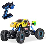 Theefun 2.4GHz 4WD RC Graffiti Rock Crawler Dual Motors Rechargeable 1:16 Scale Monster Truck Off-road RC Car (vary in doodle style)