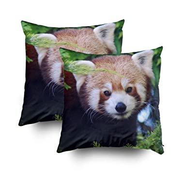 Musesh Pack of 2 red panda Cushions Case Throw Pillow Cover Sofa Home Decorative Pillowslip Gift Ideas Household Pillowcase Zippered Pillow Covers 20X20Inch