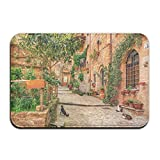 interesting tuscan outdoor kitchen style Rustic Tuscan Style Italy Non-slip Durable Floor Mat