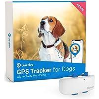 Tractive GPS DOG 4 – GPS hundspårare och hundaktivitetsmätare med obegränsat intervall, vattentät (nyaste modellen)