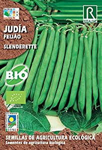 Semillas ECOLOGICAS Judia Slenderette 15 gr.