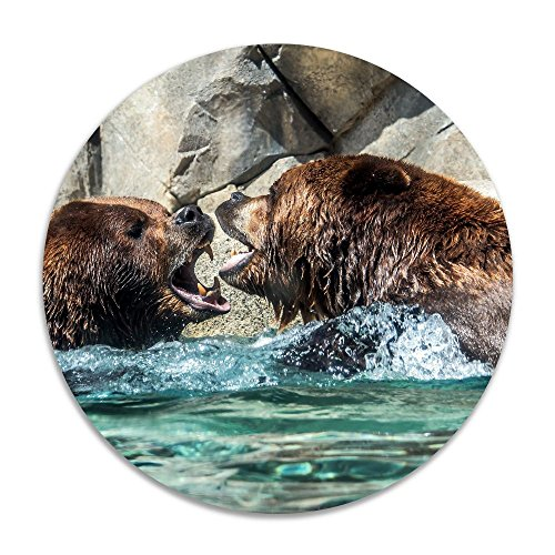 Reteone Animal Bears Picture Panda Anti-slip Coral Velvet Round Area Rugs Memory Foam Floor Carpets Mats 15.75 Inch Diameter Bedroom Rug Yoga Chair Mat Doormat (Ikea Edmonton Rugs)