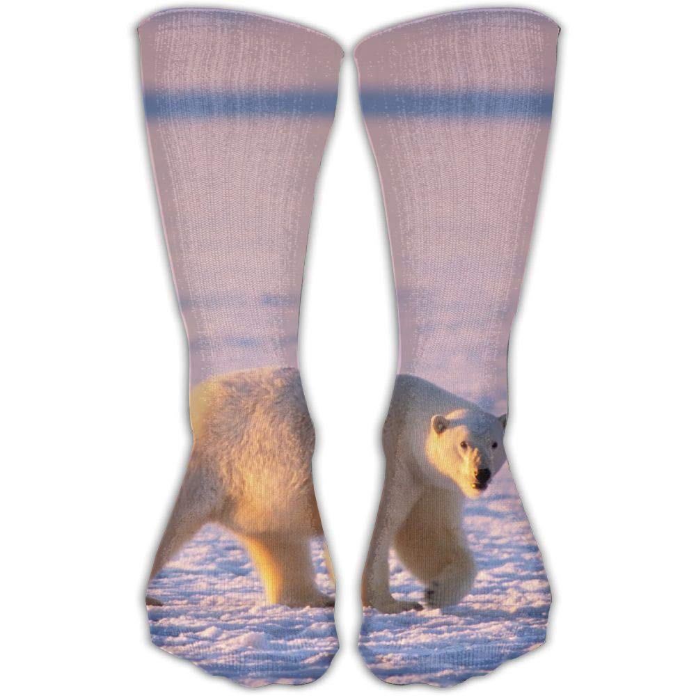 Protect Wrist For Cycling Moisture Control Elastic Sock Tube Socks Polar Bear And Wild Fox Athletic Soccer Socks
