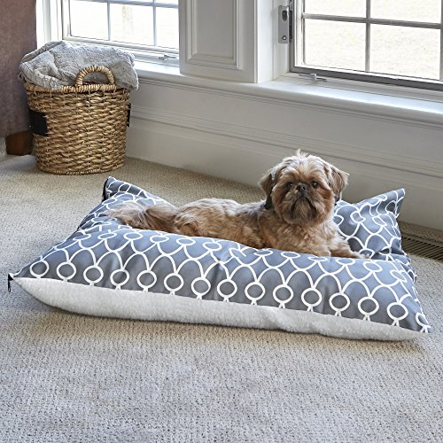 A small dog resting on his pillow dog bed by the windows.