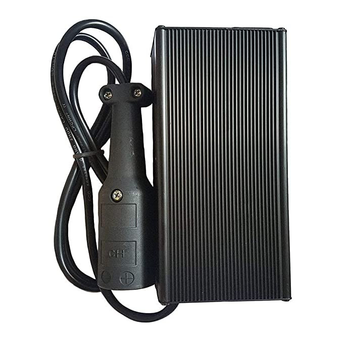 Amazon.com: Cargador de batería para carrito de golf de 48 V ...