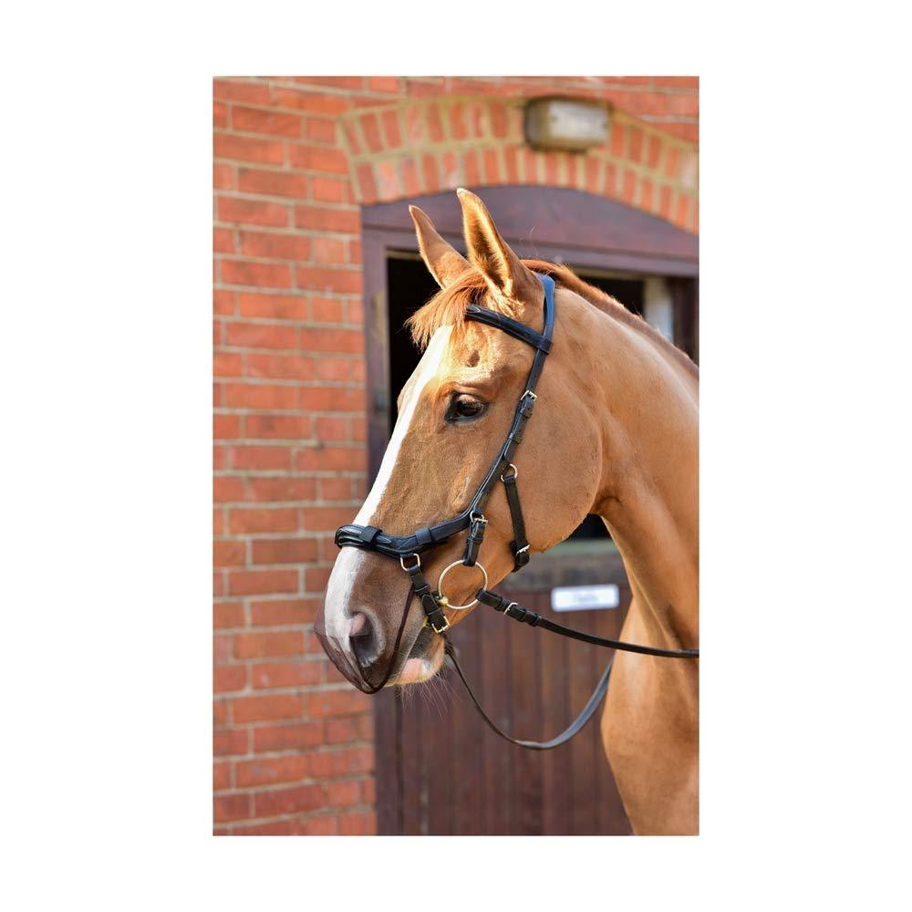 Equilibirum Net Relief Muzzle Net for Micklem Bridles (Cob/Horse) (Black)