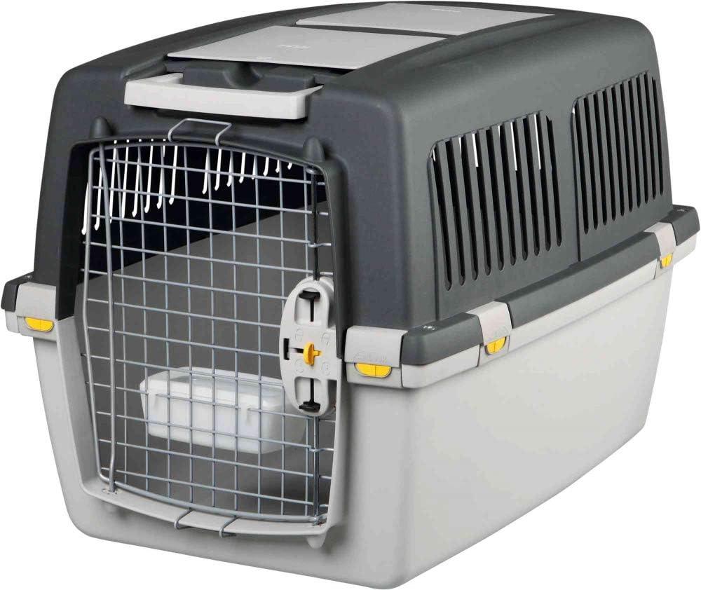 Die Hundebox Kunststoff gehört zu den absoluten Klassikern