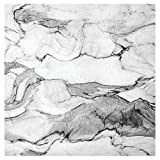 Creative Converting 317656 16 Count Marble Napoli Premium Patterned Luncheon Napkins, Black/White