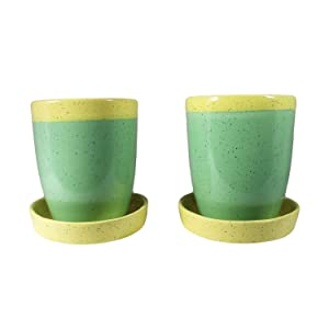 Lasaki Ceramic Mug Attached with Tray Plate Pots for indoor plants (Color:YP, D:8.5, H:10 cm) -Set of 2