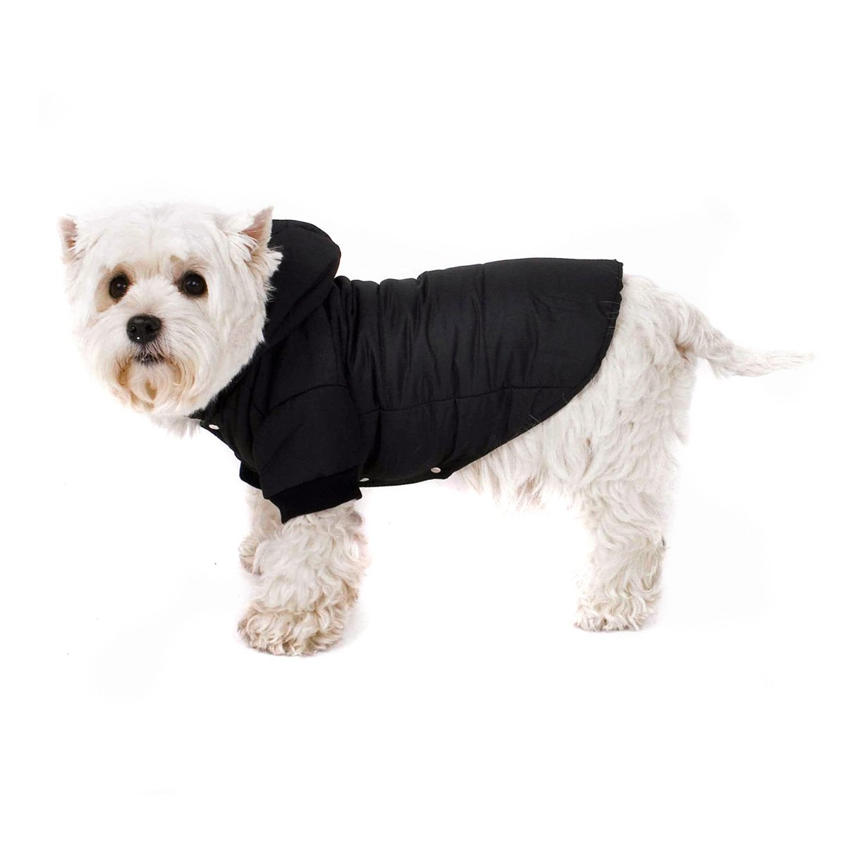 black Chic Dog Anorak for Your Dog 26cm XS Black Dog Coat with Hood