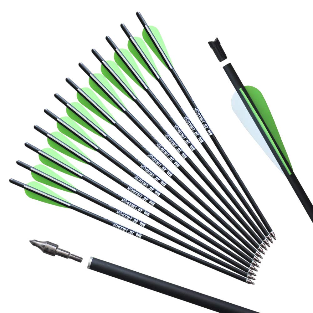 REEGOX 20 inch Carbon Crossbow Bolts Bio with 4-Inch Vanes(Pack of 12) Green