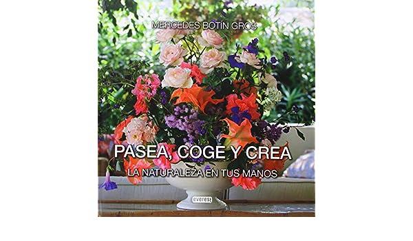 Pasea, coge y crea: MERCEDES BOTIN GROS: 9788444105239: Amazon.com: Books
