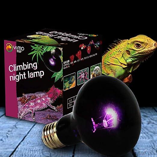 Elegante lámpara de calefacción Nocturna UVA para Reptiles, luz de ...