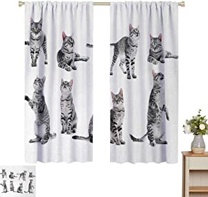 Rod Pocket Window Curtain Curtain Hanging Vertically Collage of a Cute Inquisitive Striped Shorthair Furry Playful Pussy Posing Art Print Indoor Decoration Grey White Set of 2 Panels W55 x L72